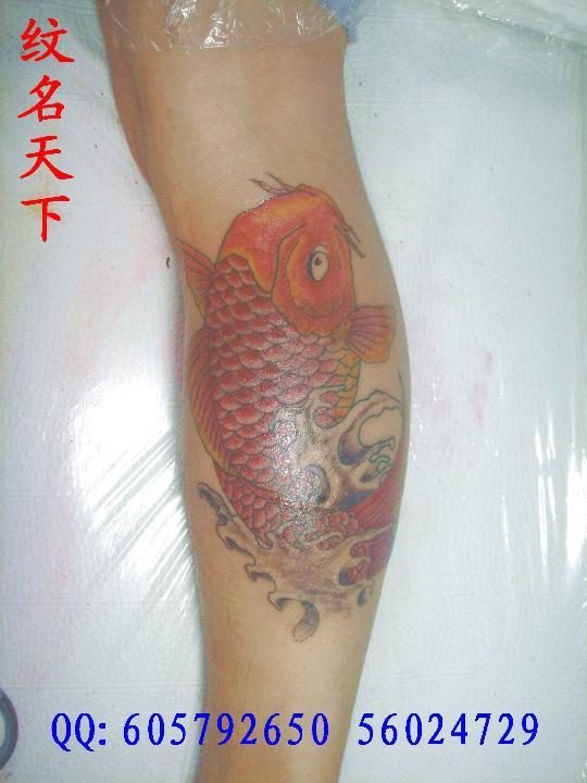 鲤鱼-若蓝刺青——上海闸北纹身社|上海宝山刺青 纹名图片