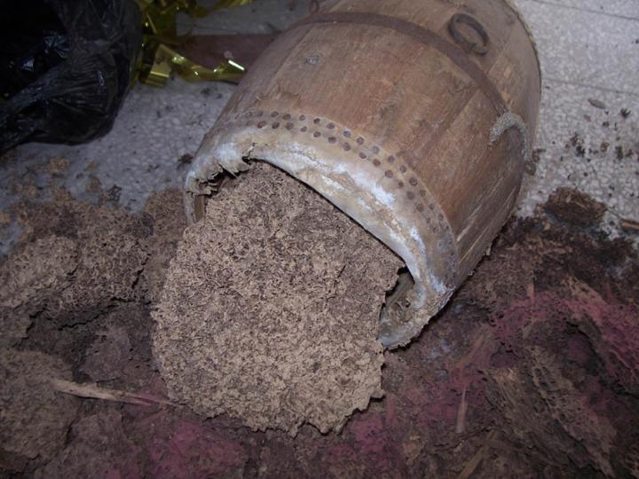 白蚁的危害哪些图片